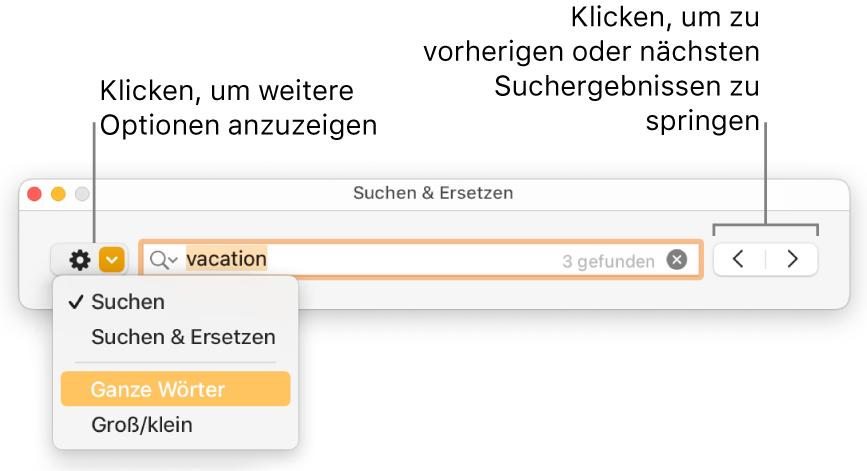 """Das Fenster """"Suchen & Ersetzen"""" mit Beschreibungen für die Taste, mit deren Hilfe Optionen zum Suchen, zum Suchen und Ersetzen, zum Suchen ganzer Wörter und zum Suchen unter Berücksichtigung der Groß-/Kleinschreibung eingeblendet werden können; Navigationstasten befinden sich rechts."""
