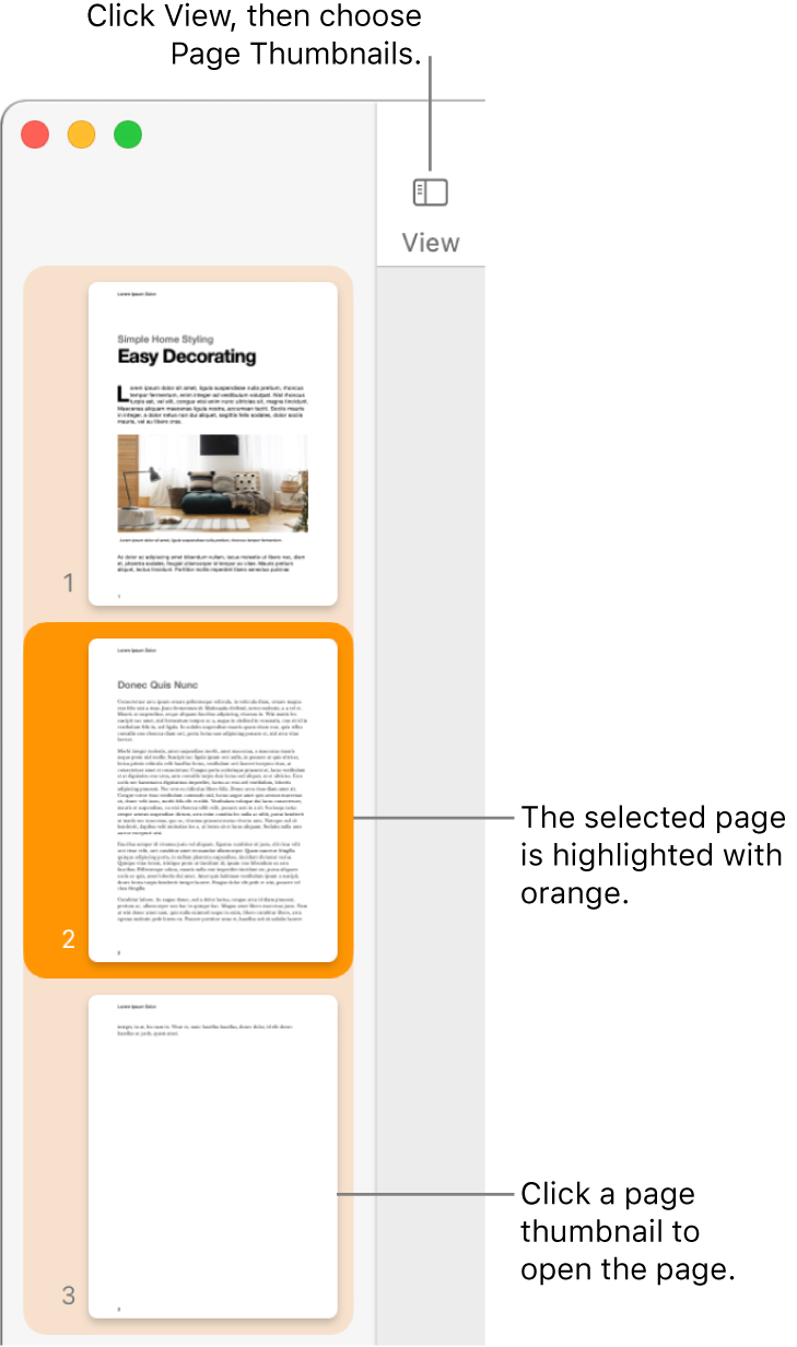 The sidebar on the left side of the Pages window with Page Thumbnails view open and a selected page highlighted in dark orange.