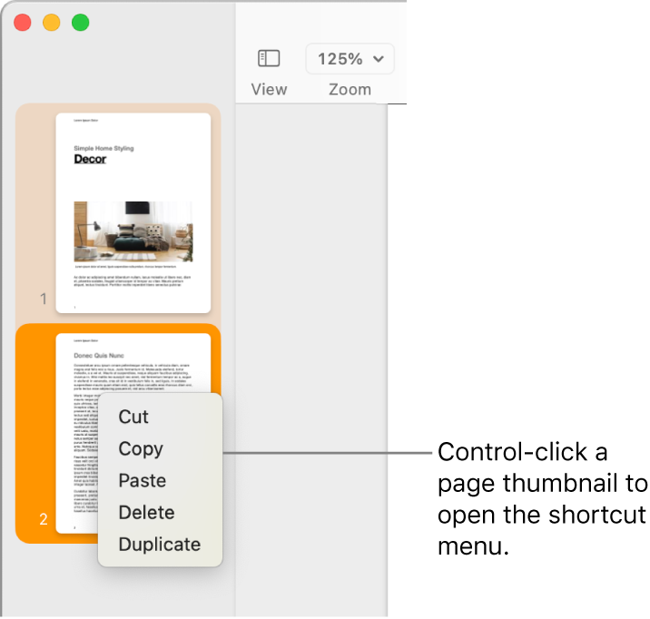 Page Thumbnails view with one thumbnail selected and the shortcut menu open.