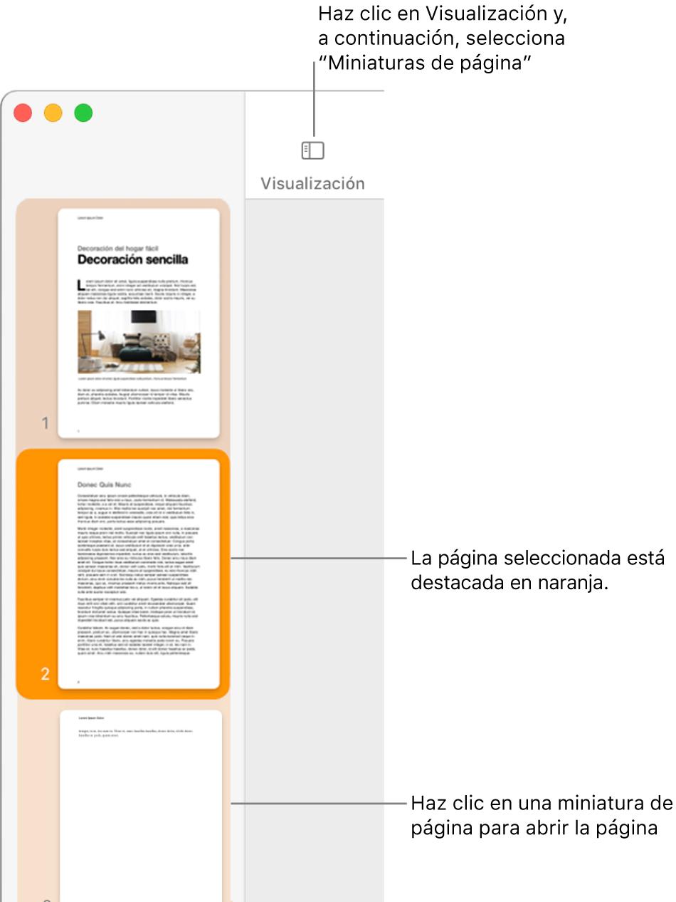 La barra lateral en el lado izquierdo de la ventana de Pages con la visualización de miniaturas de página abierta y una página seleccionada resaltada en naranja oscuro.