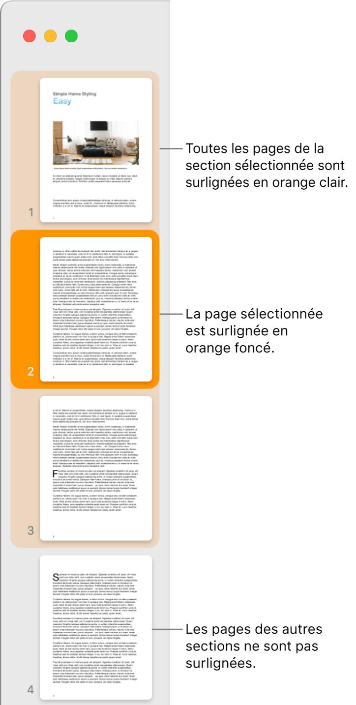 La barre latérale de la présentation en vignettes avec la page sélectionnée en surbrillance orange foncé et toutes les pages de la section sélectionnée en surbrillance orange clair.