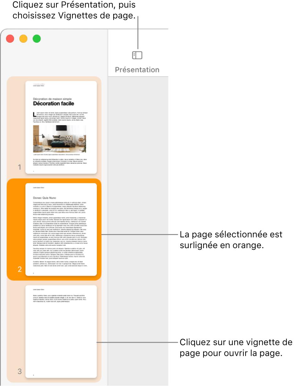 La barre latérale du côté gauche de la fenêtre Pages contenant la présentation Vignettes de page ouverte et la page sélectionnée surlignée en orange foncé.
