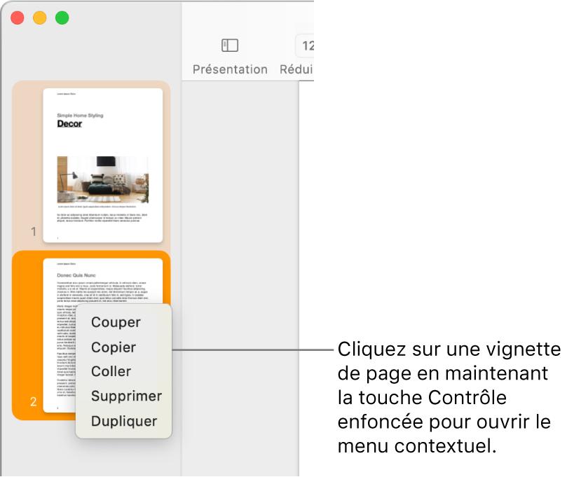 Présentation Vignettes de page avec une vignette sélectionnée et le menu contextuel ouvert.