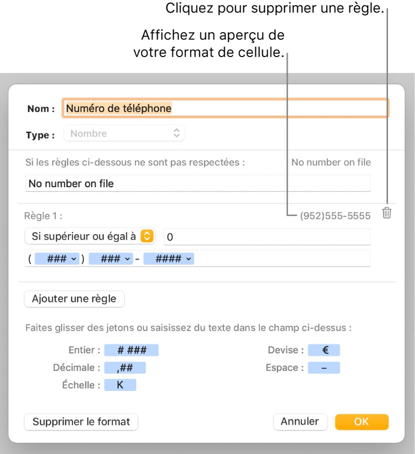 Fenêtre de format de cellule personnalisé présentant les commandes permettant de choisir un format numérique personnalisé.