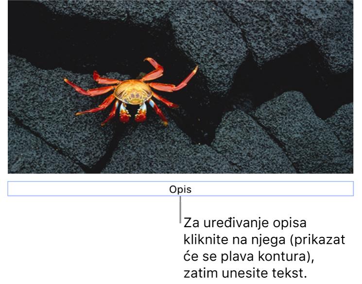 """Opis držača mjesta, """"Opis"""" se javlja ispod fotografije; plavi obrub oko polja opisa ukazuje da je odabran."""