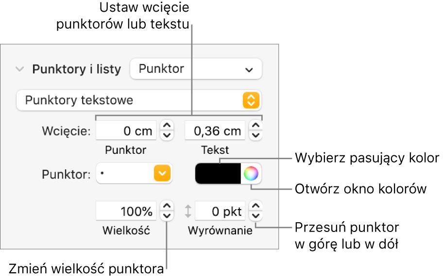 Sekcja Punktory ilisty zetykietami wskazującymi narzędzia wcięć punktorów itekstu, koloru punktora, wielkości punktora oraz wyrównywania.