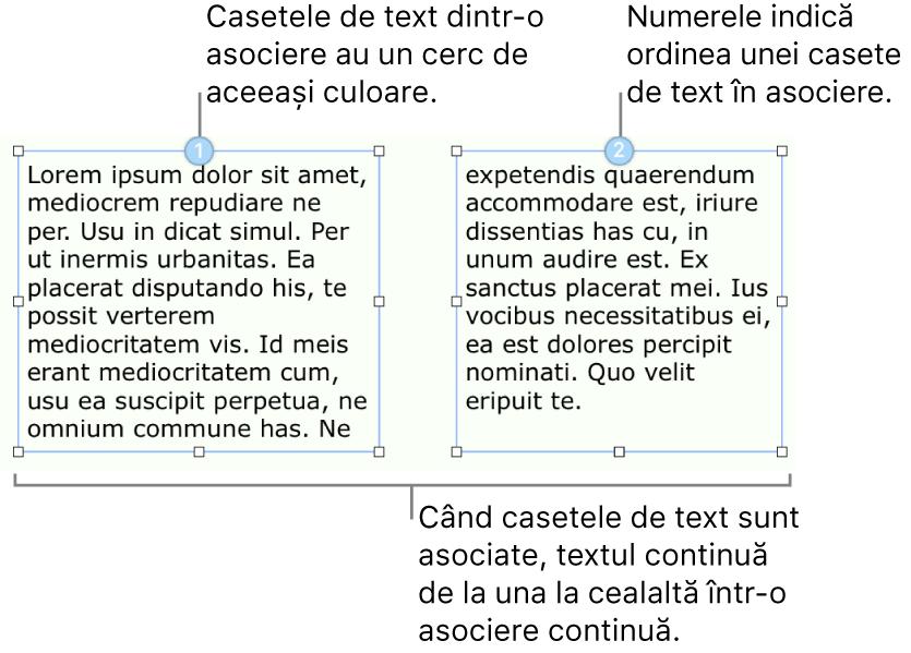 Două casete de text cu cercuri albastre în partea de sus și numerele 1 și 2 în cercuri.