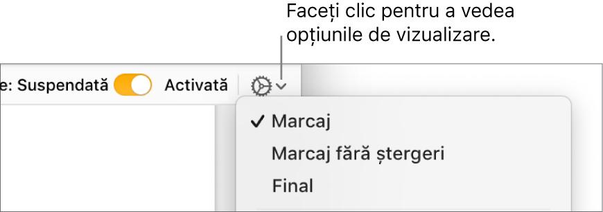 Meniul de opțiuni pentru revizuire afișând Marcaj, Marcaj fără ștergeri și Final.