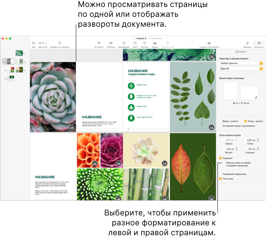 Окно Pages с миниатюрами страниц и страницами документов, открытых ввиде разворотов надве страницы. Справа, вбоковой панели «Документ», неустановлен флажок «Разные поля на левой и правой страницах».