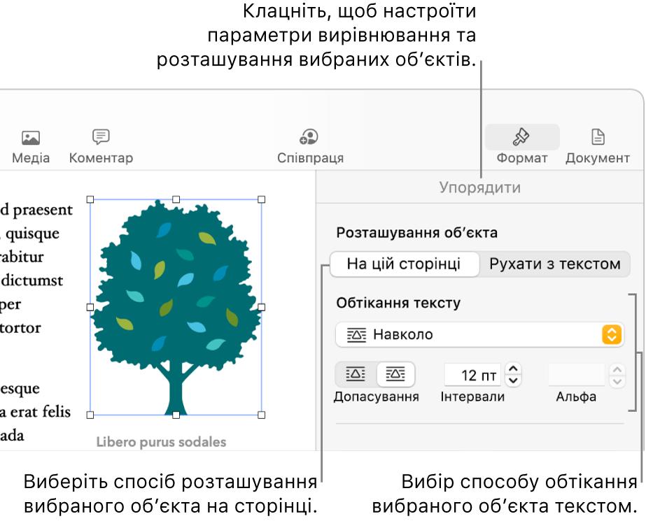 Меню «Формат», відображається бокова панель «Упорядкувати». Угорі бічної панелі «Упорядкувати» відображається налаштування «Розташування об'єкта», а нижче «Обтікання текстом».