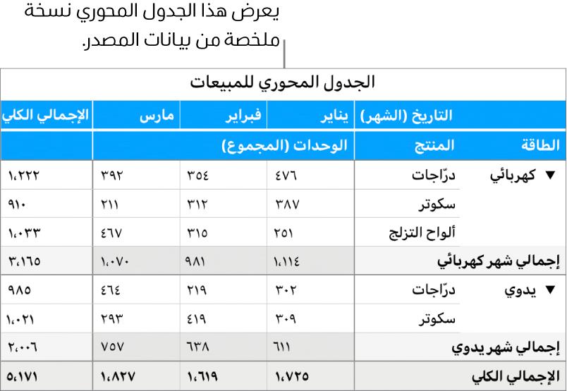 جدول محوري يعرض بيانات ملخصة وعناصر تحكم للكشف عن بيانات معينة.