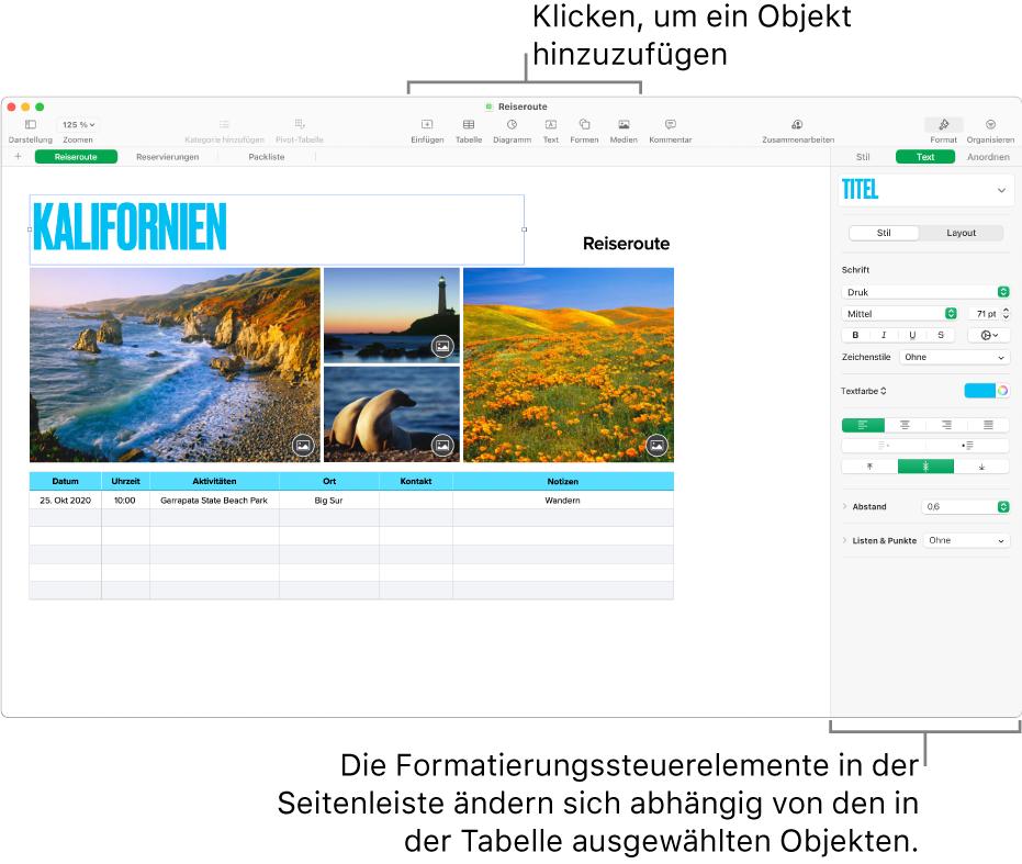 """Numbers mit dem geöffneten Tab """"Text"""" in der Seitenleiste """"Format""""."""