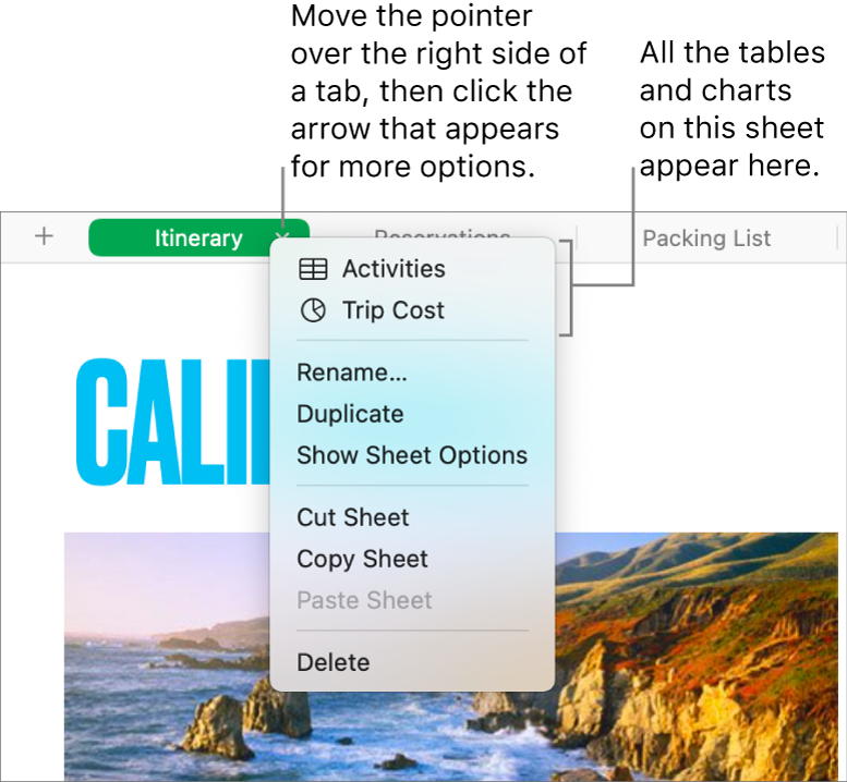 A spreadsheet tab with the shortcut menu open, showing options including Duplicate.