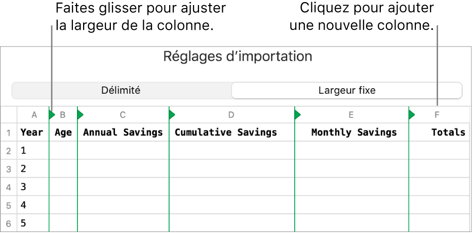 Les réglages d'importation d'un fichier texte à largeur fixe.