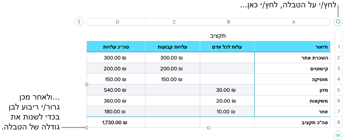 טבלה שנבחרה, עם ריבועים לבנים לשינוי גודל.