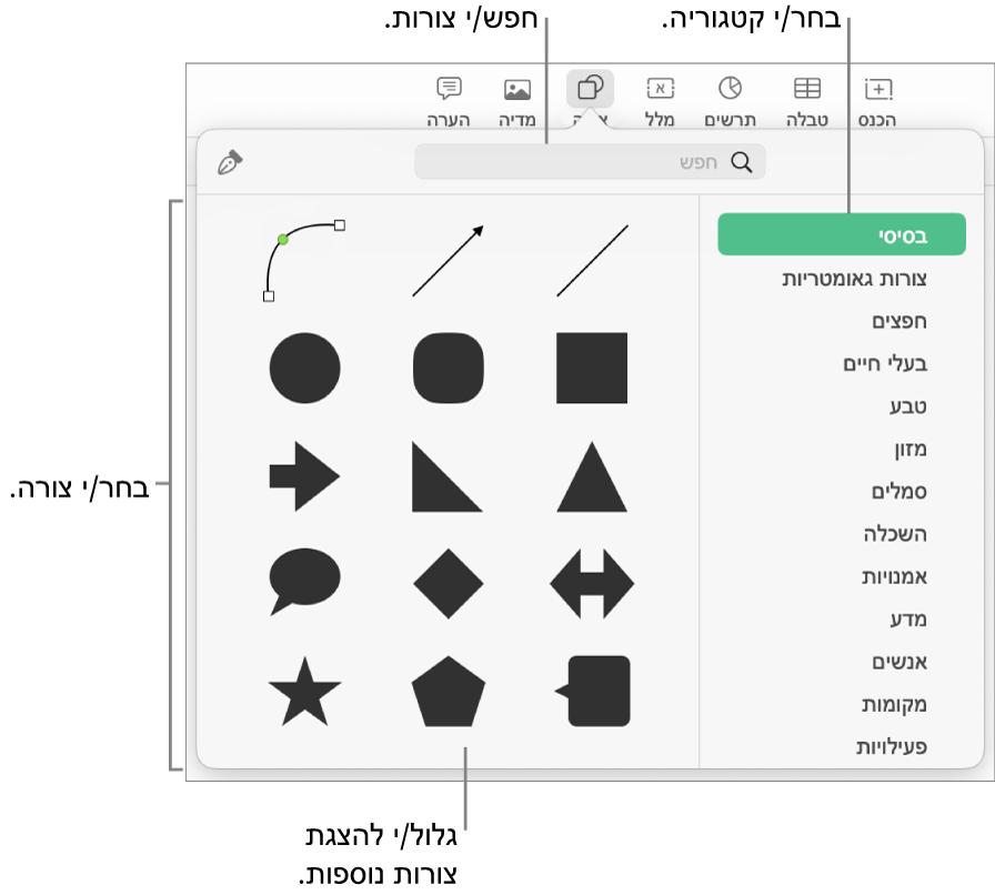 ספריית הצורות, כשקטגוריות מפורטות מצד שמאל וצורות מוצגות מצד ימין. ניתן להשתמש בשדה החיפוש בראש המסך כדי למצוא צורות ולגלול כדי להציג עוד.