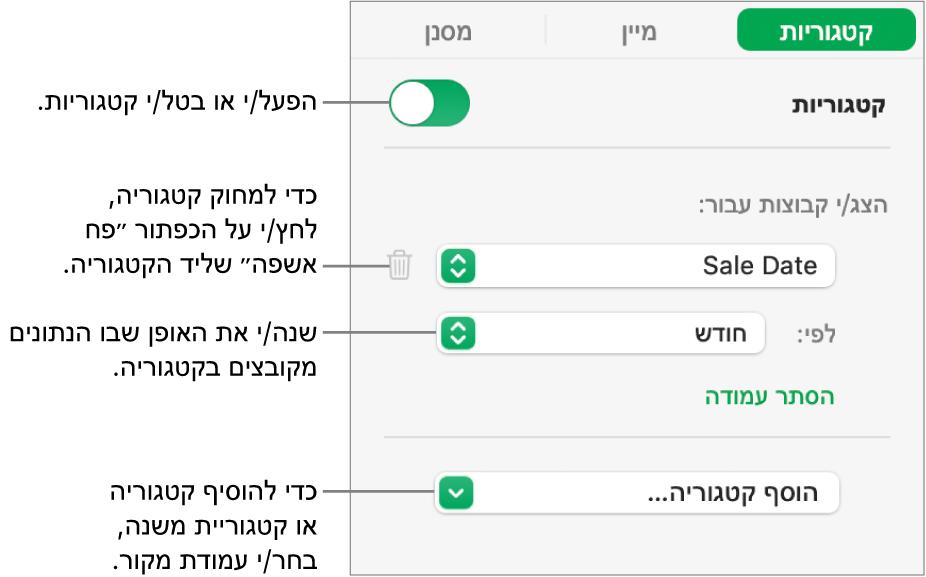סרגל הצד של קטגוריות עם אפשרויות לביטול קטגוריות, מחיקת קטגוריות, סידור מחדש של נתונים בקבוצות, הסתרת עמודת מקור והוספת קטגוריות.