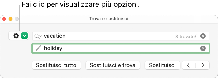 """Finestra """"Trova e sostituisci"""" con una didascalia per il pulsante che consente di visualizzare più opzioni."""
