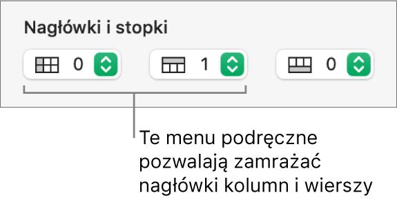 Menu podręczne pozwalające na dodawanie do tabeli kolumn iwierszy nagłówka istopki oraz na zamrażanie wierszy ikolumn.