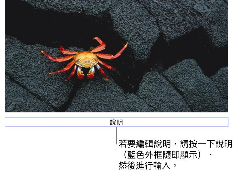 暫存區說明,「說明」顯示在照片下方,藍色外框環繞說明欄位顯示已選取。