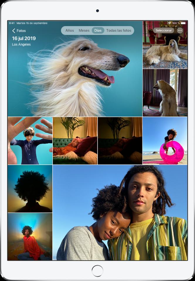 """Se muestra la fototeca en la visualización Día. Una selección de miniaturas de fotos llena la pantalla. En la esquina superior izquierda de la pantalla se encuentra el botón Fotos para abrir la barra lateral. Debajo del botón Fotos está la fecha y la ubicación donde se han hecho las fotos que se muestran en la pantalla. Arriba en el centro hay opciones para explorar fotos por Años, Meses, Días o """"Todas las fotos""""; Días está seleccionado. En la parte superior derecha de la pantalla están los botones Seleccionar y """"Más opciones""""."""