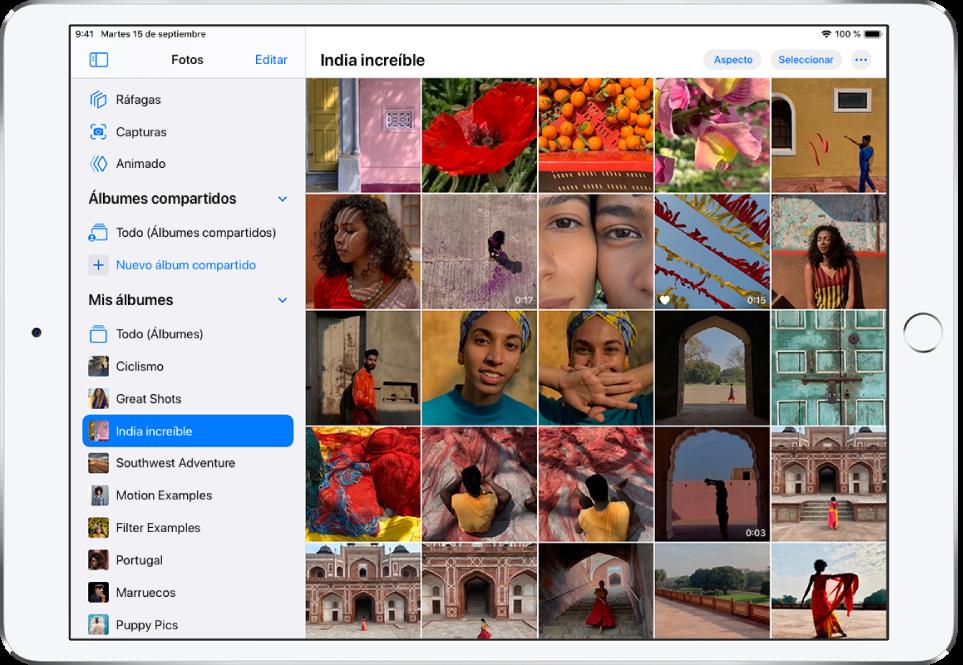"""La barra lateral Fotos está abierta en la parte izquierda de la pantalla. Debajo del encabezado """"Mis álbumes"""", el álbum titulado """"India increíble"""" está seleccionado. El resto de la pantalla del iPad está llena de fotos y vídeos del álbum """"India increíble"""", que se muestran en mosaicos."""