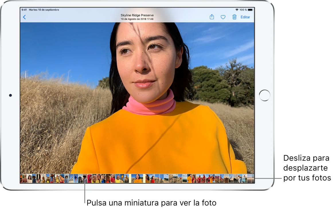 """Foto a pantalla completa con miniaturas de otras fotos de la biblioteca en la parte inferior de la pantalla. Arriba a la izquierda está el botón Atrás, que te lleva a donde estabas explorando. A lo largo de la parte superior derecha, se encuentran los botones Compartir, """"Me gusta"""", Eliminar y Editar."""