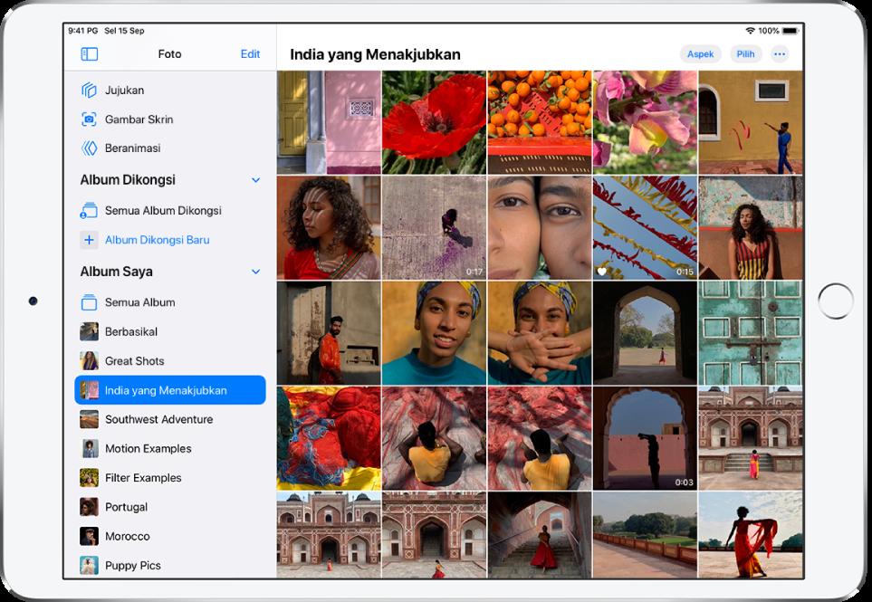 Bar sisi Foto dibuka di sebelah kiri skrin. Di bawah tajuk Album Saya, album bertajuk India Hebat dipilih. Baki skrin iPad dipenuhi dengan foto dan video daripada album India Hebat yang dipaparkan dalam jubin.