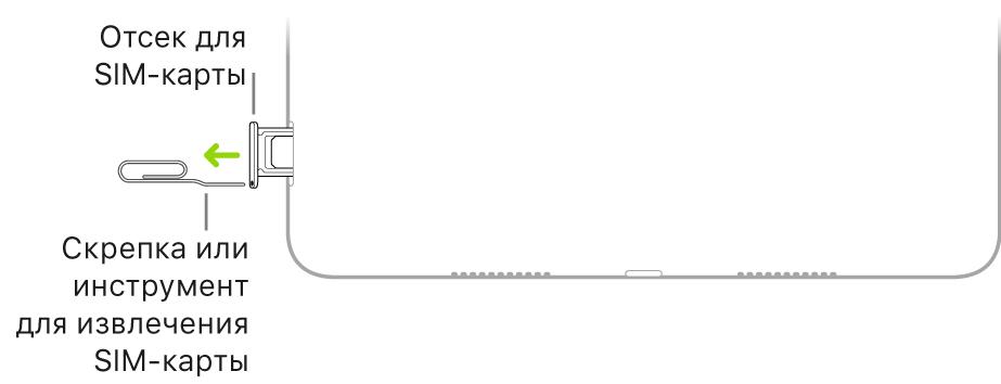 Конец небольшой скрепки или инструмента для извлечения SIM-карты вставлен в отверстие лотка на правой стороне iPad.
