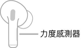 右邊 AirPods 的圖解顯示「力度感測器」的位置。當 AirPods 放入耳內時,「力度感測器」會位於套管上緣。