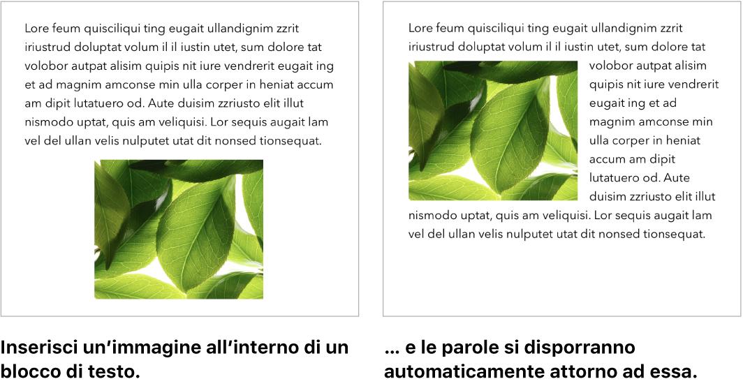 Una finestra di Pages che illustra come il testo si dispone attorno alla grafica.