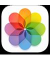 the Photos app icon