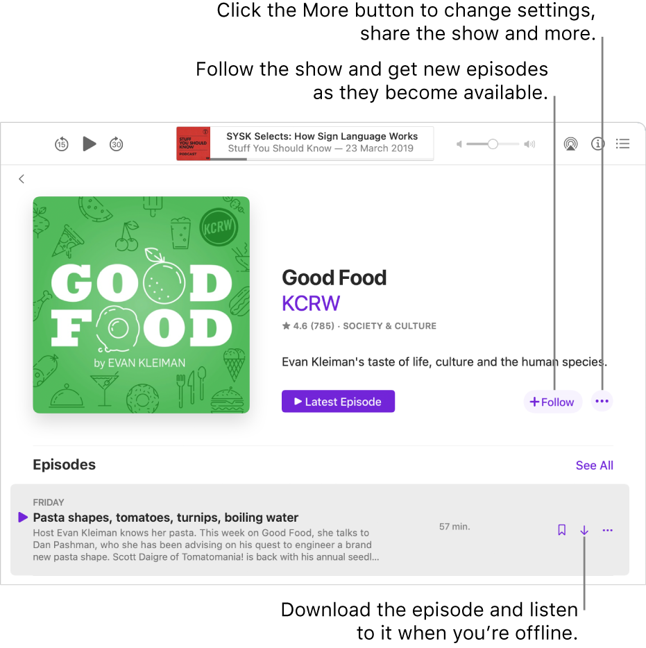 The show detail screen. Click Follow to get new episodes as they become available. Click the More button to change settings, share the show and more. Download the episode if you want to listen to it when you're not connected to the internet.