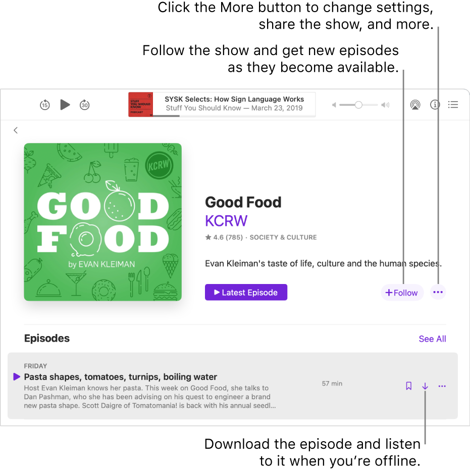 The show detail screen. Click Follow to get new episodes as they become available. Click the More button to change settings, share the show, and more. Download the episode if you want to listen to it when you're not connected to the internet.