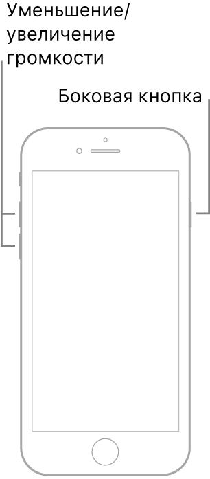 iPhone скнопкой «Домой», повернутый экраном вверх. Налевой стороне устройства показаны кнопки увеличения иуменьшения громкости, анаправой стороне показана боковая кнопка.