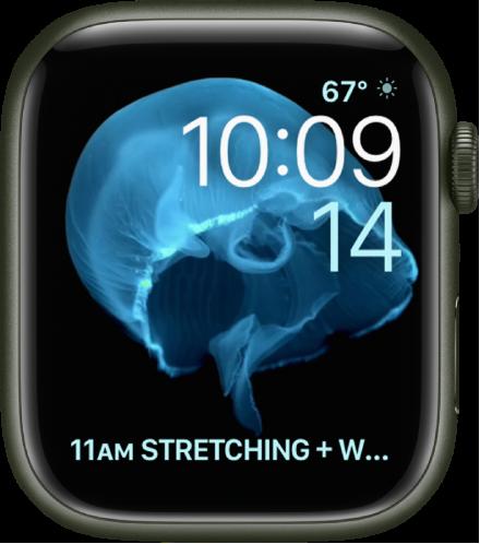 해파리가 나타난 모션 시계 페이스. 움직이는 대상체를 선택하고 여러 가지 컴플리케이션을 추가할 수 있음. 오른쪽 상단에는 기상 상태 컴플리케이션, 그 아래에 시간 및 날짜, 하단에는 캘린더 일정 컴플리케이션이 있음.