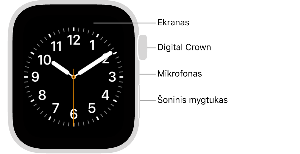 """""""Apple Watch Series 6"""" priekis, ekrane rodomas ciferblatas, taip pat matyti """"Digital Crown"""", mikrofonas ir laikrodžio šone nuo viršaus iki apačios išdėstytas šoninis mygtukas."""