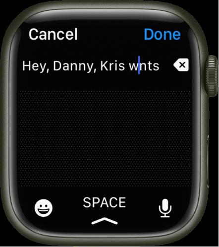 Ett textinmatningsfält där pekaren är mellan två bokstäver i ett felstavat ord. Raderingsknappen finns till höger om texten. Knapparna för emojier, blanksteg och diktering finns längst ned.
