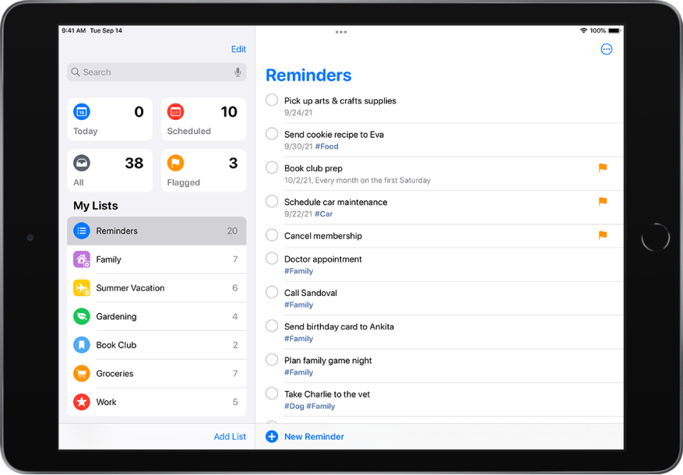 A Reminders screen showing reminder lists on the left side, and a to-do list on the right side. The New Reminder button is at the bottom center.