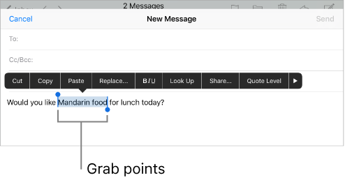 Shows the 'grab points' (blue dots and highlight) that appears when selecting a letter, word, phrase, etc...