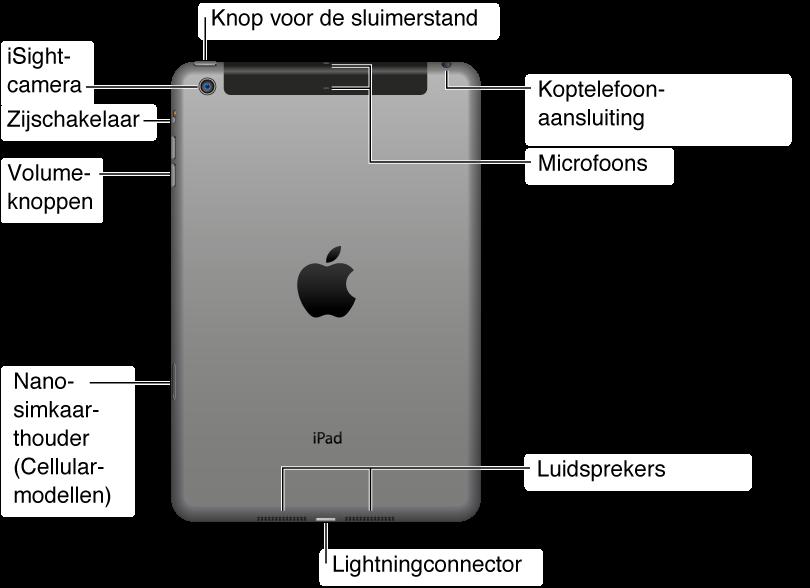 De achterkant van de iPad mini in een oogopslag. Van rechts naar links bevinden zich de volgende onderdelen: de headsetaansluiting, de luidspreker, de Lightning-connector, de nanosimkaarthouder (op sommige Wi-Fi + 3G-modellen), de knop voor de volumeregeling, de zijschakelaar, de iSight-camera, de knop voor de sluimerstand en de microfoon.