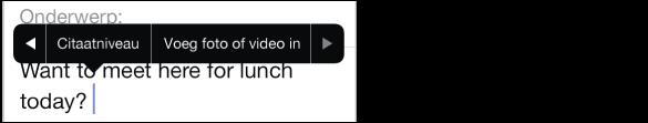 Een bericht dat wordt opgesteld. Tik op het invoegpunt om het stijlmenu te openen en tik vervolgens op 'Voeg foto of video in' om een onderdeel als bijlage aan het bericht toe te voegen.