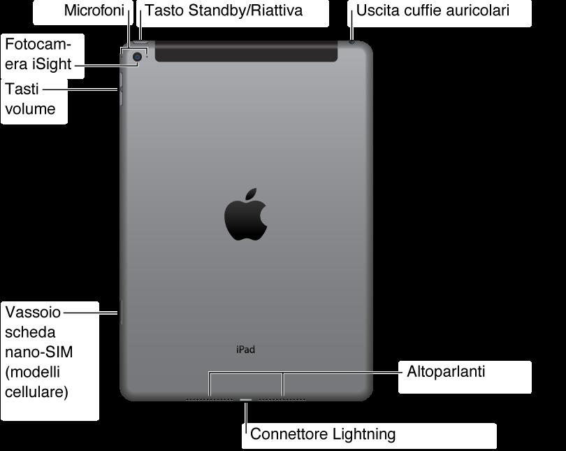 L'immagine mostra il retro di un iPad. Da destra a sinistra, mostra la posizione dell'uscita cuffie, il vassoio per la micro SIM (su alcuni modelli iPad Wi-Fi + 3G), il connettore Lightning, l'altoparlante interno, il tasto Volume su/giù, l'interruttore laterale, la fotocamera iSight, il pulsante standby/riattiva e il microfono.