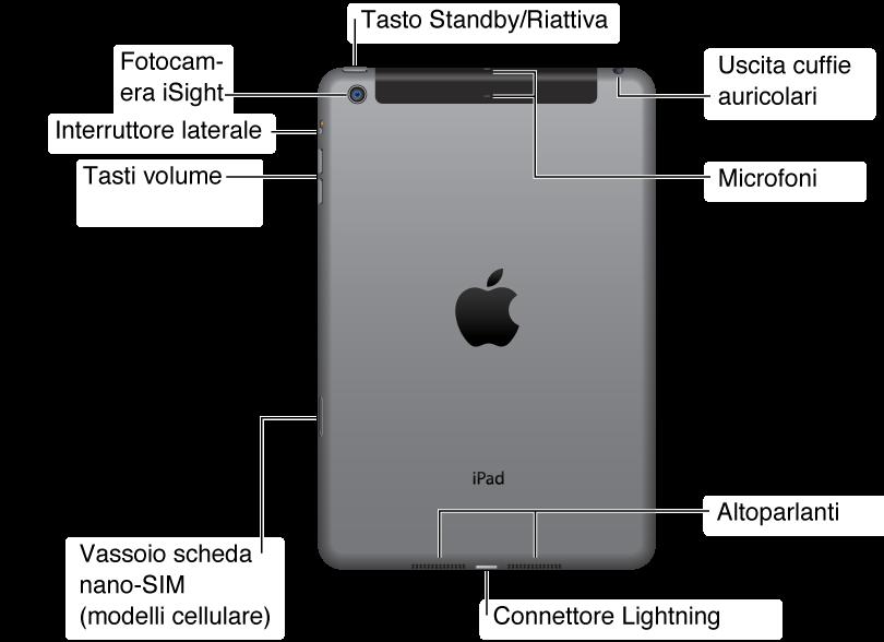 L'immagine mostra il retro di un iPadmini. Da destra a sinistra, mostra la posizione dell'uscita cuffie, l'altoparlante, il connettore Lightning, il vassoio per la nano SIM (su alcuni modelli iPad Wi-Fi + 3G), il tasto Volume su/giù, l'interruttore laterale, la fotocamera iSight, il pulsante standby/riattiva e il microfono.