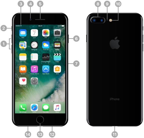 Mặt trước và mặt sau của iPhone. Các chú thích minh họa các nút vật lý và các tính năng khác, bao gồm công tắc Chuông/im lặng và các nút âm lượng ở một cạnh, nút Nguồn và khay đựng thẻ SIM ở cạnh đối diện, cùng với đầu nối Lightning, loa và các micrô ở cạnh dưới. Trên mặt trước, ở trên cùng, là camera FaceTime mặt trước và ống nghe/micrô phía trước/loa. Nút Home nằm ở giữa phần dưới cùng trên mặt trước. Trên mặt sau, ở trên cùng là hai camera góc rộng và chụp xa 12MP, micrô phía sau và đèn flash True Tone. Màn hình hiển thị Màn hình chính với các ứng dụng và thanh trạng thái nằm ở trên cùng