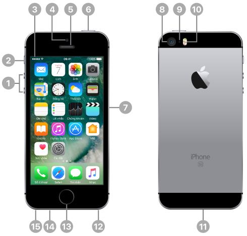 Mặt trước và mặt sau của iPhone. Các chú thích minh họa các nút vật lý và các tính năng khác, bao gồm công tắc Chuông/im lặng và các nút âm lượng ở một cạnh, nút Nguồn và khay đựng thẻ SIM ở cạnh đối diện, cùng với giắc cắm tai nghe, đầu nối Lightning và các loa ở cạnh dưới. Trên mặt trước, ở trên cùng, là camera FaceTime mặt trước và ống nghe/micrô phía trước. Nút Home nằm ở giữa phần dưới cùng trên mặt trước. Trên mặt sau, ở trên cùng là camera mặt sau, micrô phía sau và đèn flash True Tone. Màn hình hiển thị Màn hình chính với các ứng dụng và thanh trạng thái nằm ở trên cùng