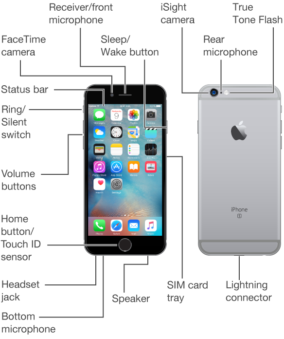 The top, front, bottom, and back of iPhone. Callouts indicate the physical buttons and other features, including the Ring/Silent switch and volume buttons on one side, the Sleep/Wake button and the SIM card tray on the opposite side, and the headset jack, Lightning connector, and speaker on the bottom. On the front, at the top, are the FaceTime camera and receiver/front microphone. The Home button is at the bottom center of the front. On the back, at the top, are the iSight camera, rear microphone, and True Tone Flash. The display takes up most of the front, here showing the main Home screen with its apps and the status bar across the top