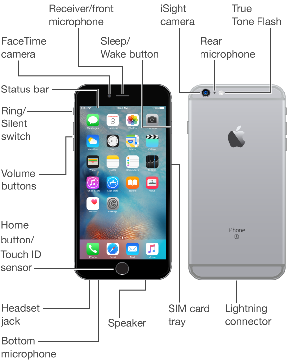 The top, front, bottom, and back of iPhone. Callouts indicate the physical buttons and other features, including the Ring/Silent switch and volume buttons on one side, the Sleep/Wake button and the SIM card tray on the opposite side, and the headset jack, Lightning connector, and speaker on the bottom. On the front, at the top, are the FaceTime camera and receiver/front microphone. The Home button is at the bottom center of the front. On the back, at the top, are the iSight camera, rear microphone, and True Tone Flash. The display shows the main Home screen with its apps and the status bar across the top