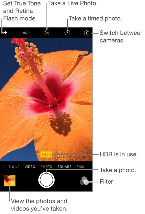 Camera in Photo mode. Slide the screen left or right to switch between modes. The flash mode, HDR Auto, Live Photo, Timer, and Switch Camera buttons appear at the top. Tap the thumbnail at the lower left to view the photos and videos you've taken. The Take Picture button is at bottom center. The Filters button is at lower right. The HDR badge on photo indicates HDR is in use