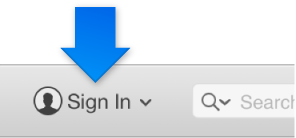 The iTunes Store sign in button